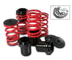1992 Honda Accord Red Coilovers Lowering Springs Kit with Scale