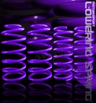 1998 Ford Mustang GT Purple Lowering Springs