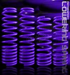 2001 Honda Prelude Purple Lowering Springs
