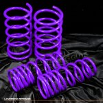 1997 Nissan Maxima Purple Lowering Springs