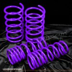 Nissan Sentra 1995-1999 Purple Lowering Springs