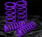 Ford Focus 2000-2005 Purple Lowering Springs