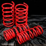 1997 Nissan Maxima Red Lowering Springs